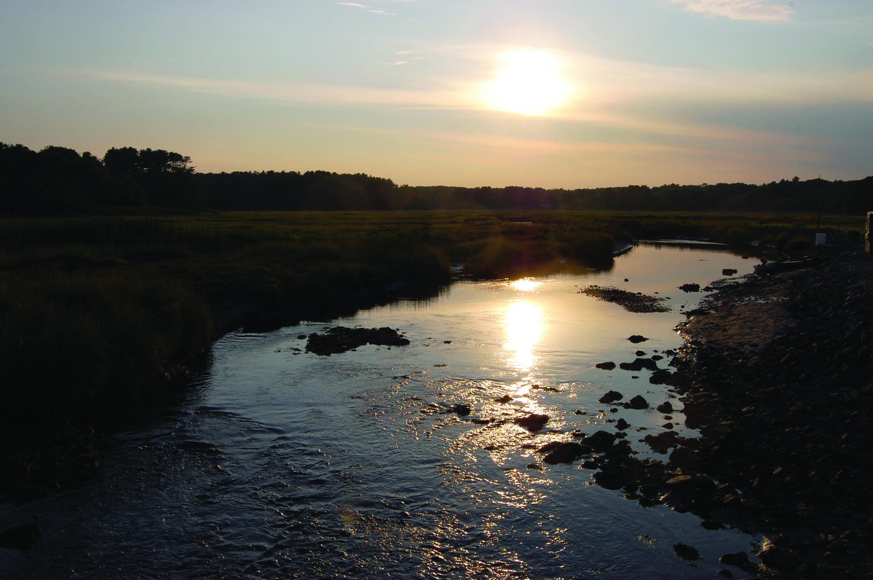 An evening sunset overlooking a darkened marsh.