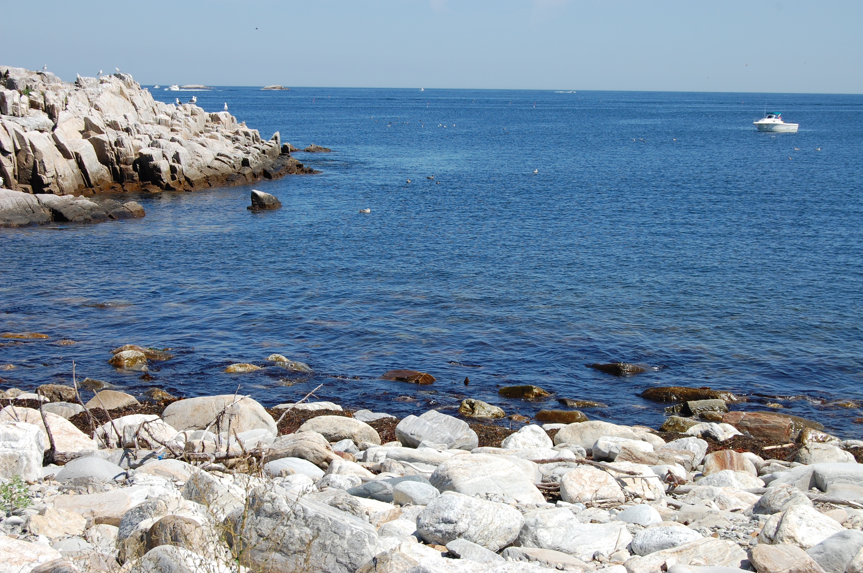 A calm ocean cove on a rocky shoreline with a white boat in the background.