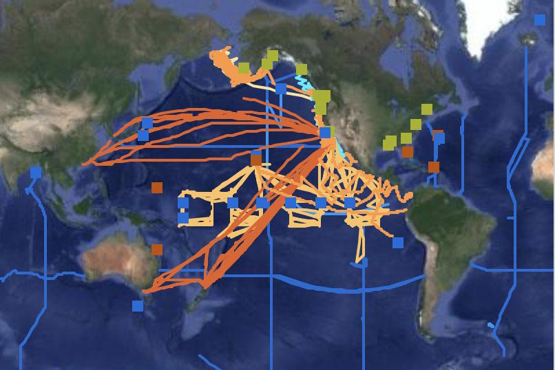 pacific ocean ship traffic