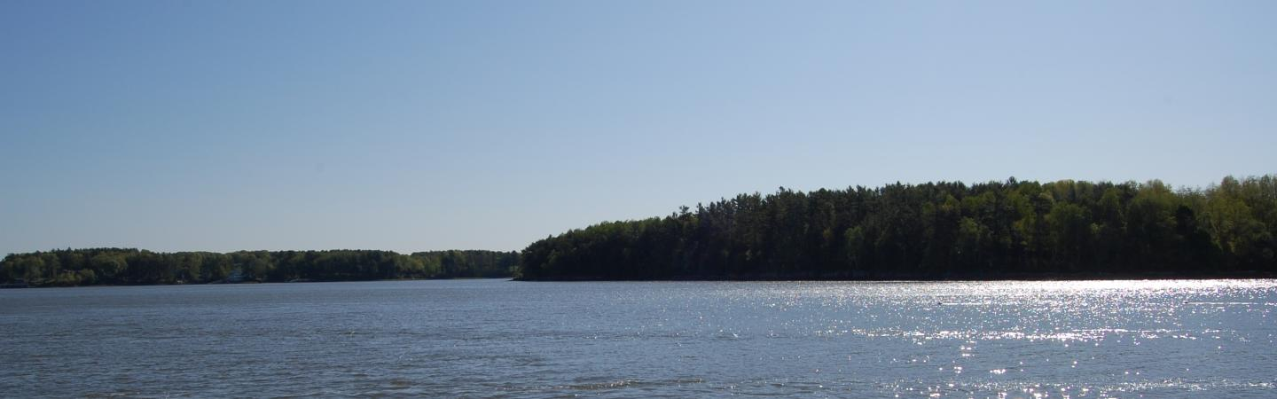 A bright sunny day with sparkling bay water and green coniferous trees on shoreline.
